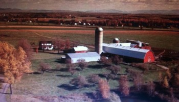 Ferme agricole 1980.