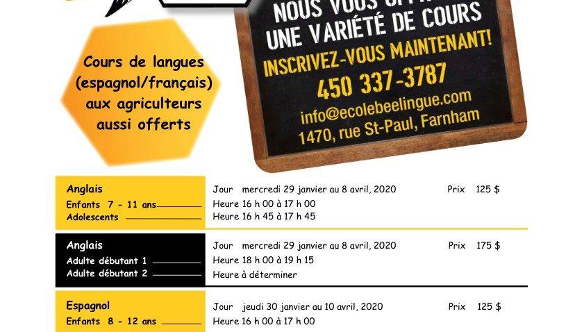 Cours de langues offerts par l'école Bee-Lingue
