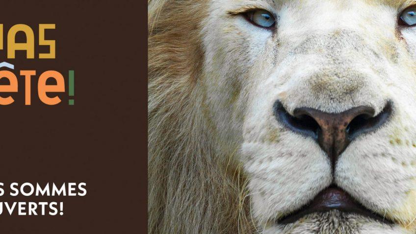 Visitez le Parc Safari d'Hemmingford